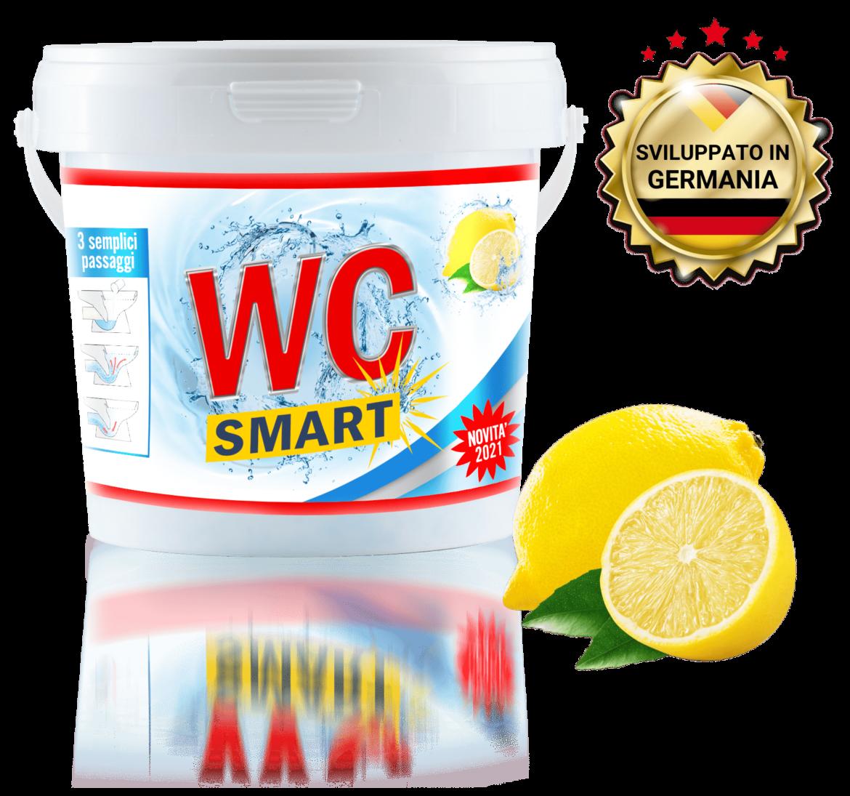 WC Smart pulisci il bagno senza strofinare: vantaggi, acquisto sul sito ufficiale, recensione completa e prezzo